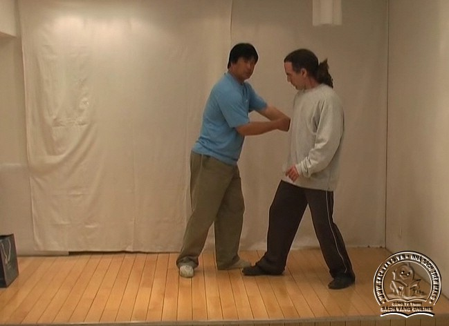 Yin Style Babua Fighting Methods - screenshot 6